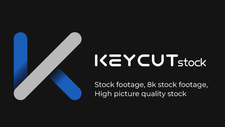 A Step-by-Step Guide to stock video
